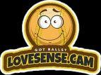 LOVE SENSE CAM logo